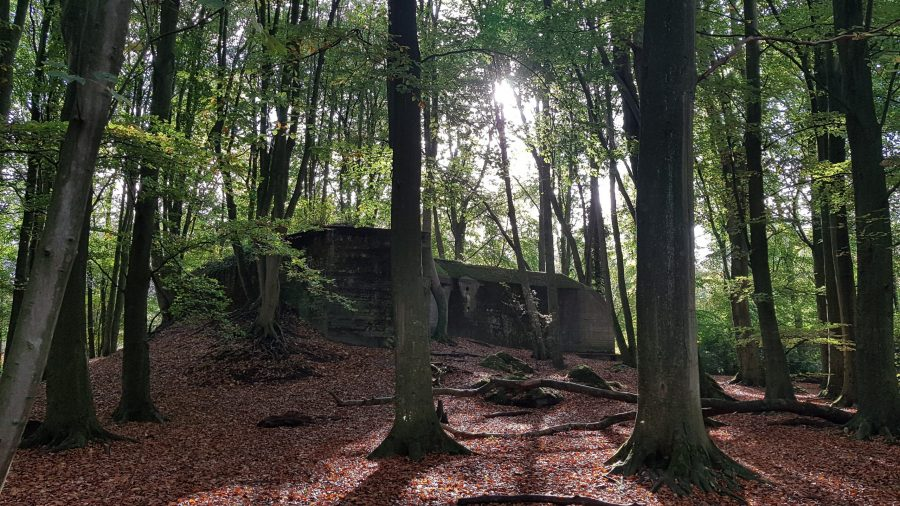 Clingendael bunker 1 met zonlicht