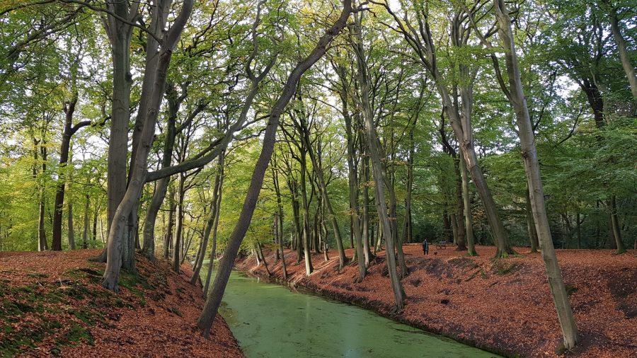 Clingendael laan met water en bomen