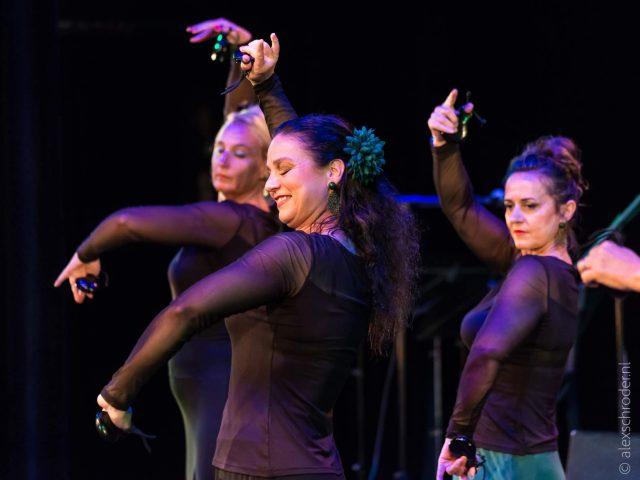 Liz Dans Flamenco