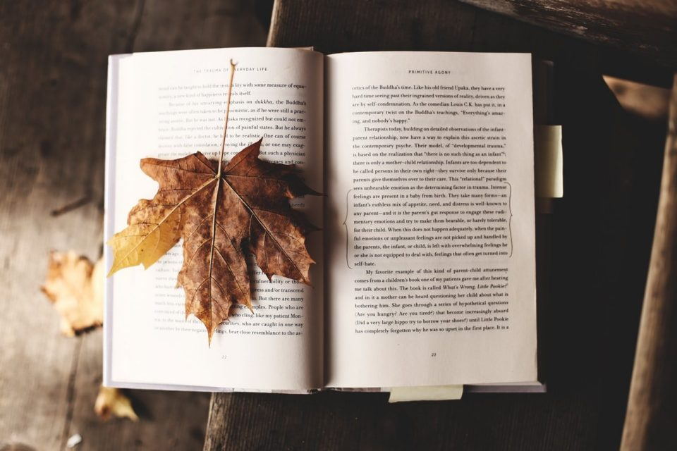 Griezelen met spannende boeken