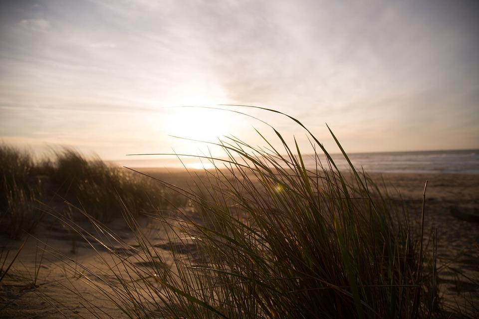 strandwandeling in Zuid-Holland