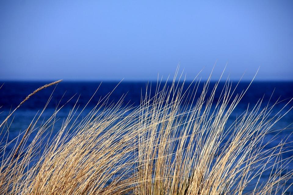 strandwandeling in Zandvoort