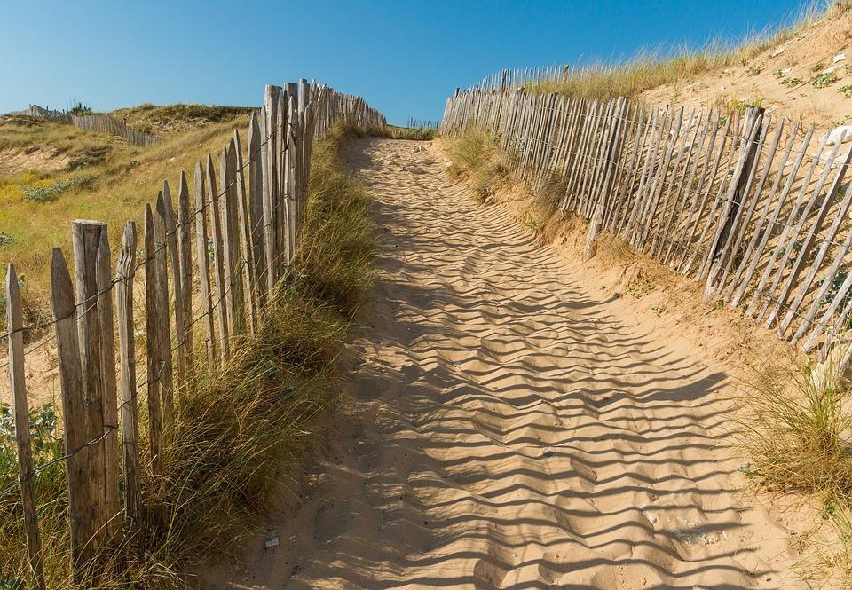 Herfstwandelen strand nog meer duinen