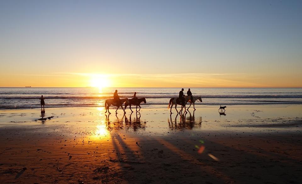 Strandwandeling met paarden bij zonsondergang