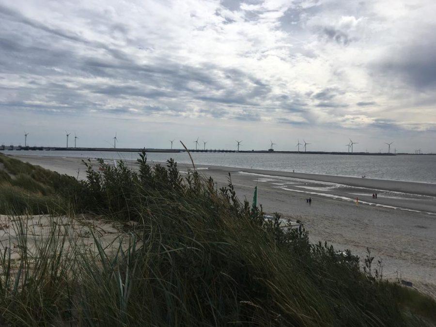 Herfstwandelen strand zeeland