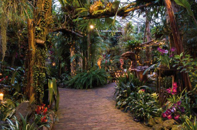Foto: De Orchideeënhoeve