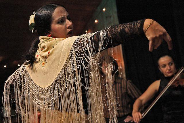 flamenco bij Lizdans