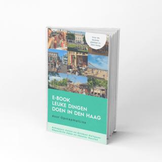 e-book Den Haag 2018